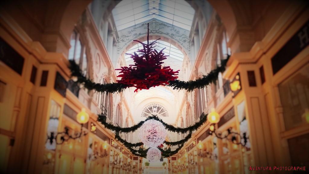 passage pommeraye Noel 2015